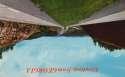 Postcard GA Greetings from Georgia SKU 1896PC