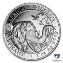 2018 1 oz Somalia Silver Elephant BU (Dog Privy)