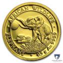 2016 1/2 g Somalia Gold African Elephant BU (In Capsule)